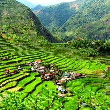 banaue-rice-terraces1 - Copy